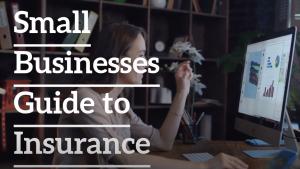 small-insurance-guide